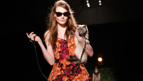 Cats Own the Runway at New York Fashion Week