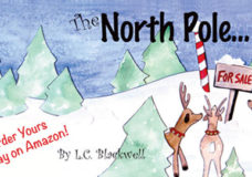The North Pole…For Sale
