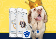 Pettag+ (Pet Tag Plus), First App-Based Ecosystem for Pet Market, Launches